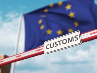 Leading exporters still facing long border delays and massive fines, insists Speedy Freight